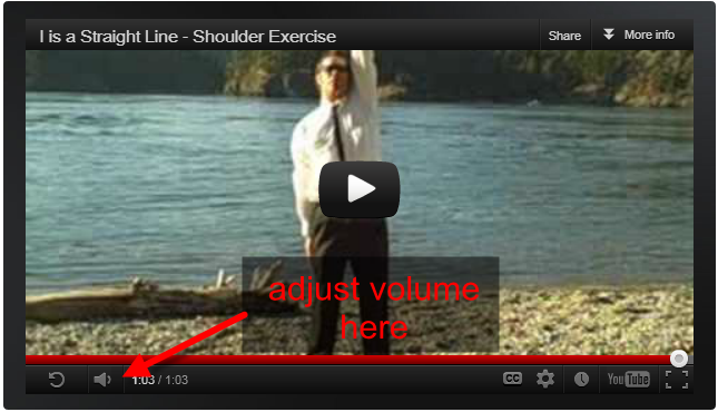 click the volume icon in the youtube player